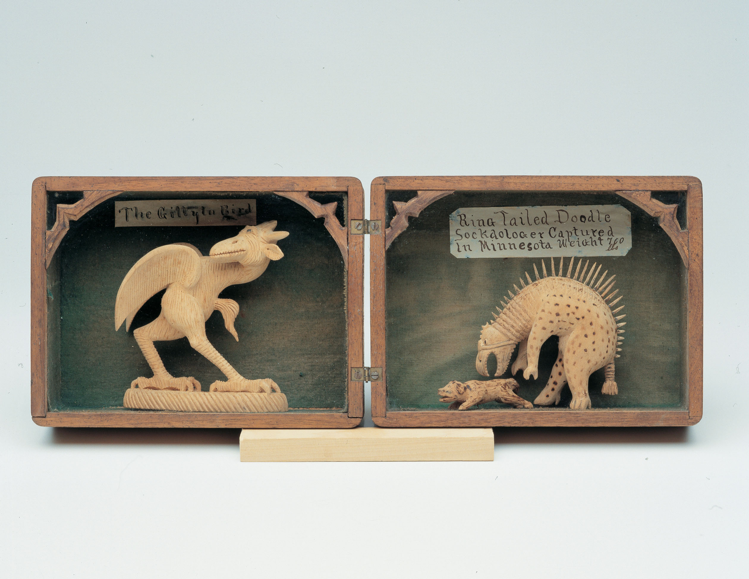 Levi Fisher Ames The Gillytu Bird and Ring Tailed Doodle Sockdologer Captured in Minnesota Weight 700 lbs (shadowbox), c. 1896-1910