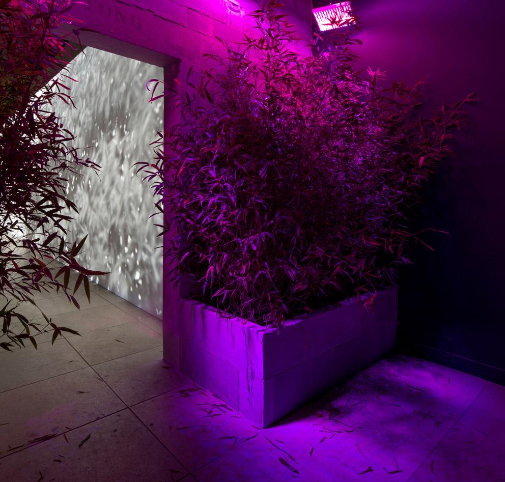 Biennale Arte 2013 Padiglione Danimarca