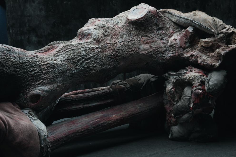 Berlinde De Bruyckere, Kreupelhout – Cripplewood, 2013. Biennale di Venezia. Padiglione Belgio.