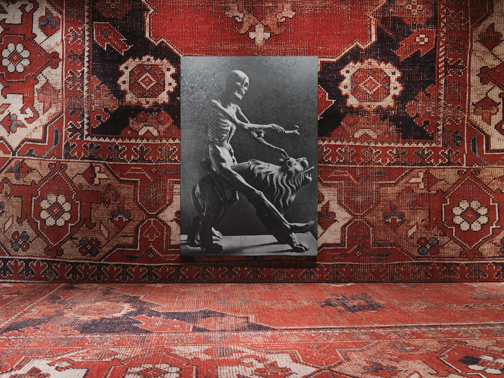 Rudolf Stingel, Palazzo Grassi