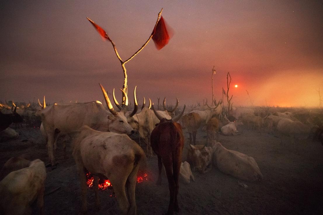 Foto di Kazuyoshi Nomachi. Un accampamento di allevatori nella notte mentre sorge la luna piena Jonglei, Sudan del Sud 2012.