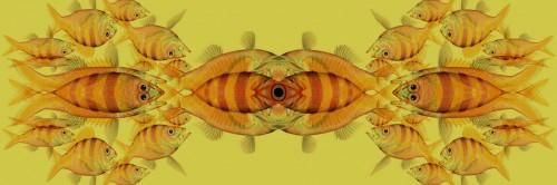 Pesci di Valerio Sommella