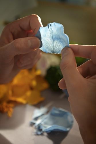 Ballon Bleu Perroquet en marqueterie florale, Cartier