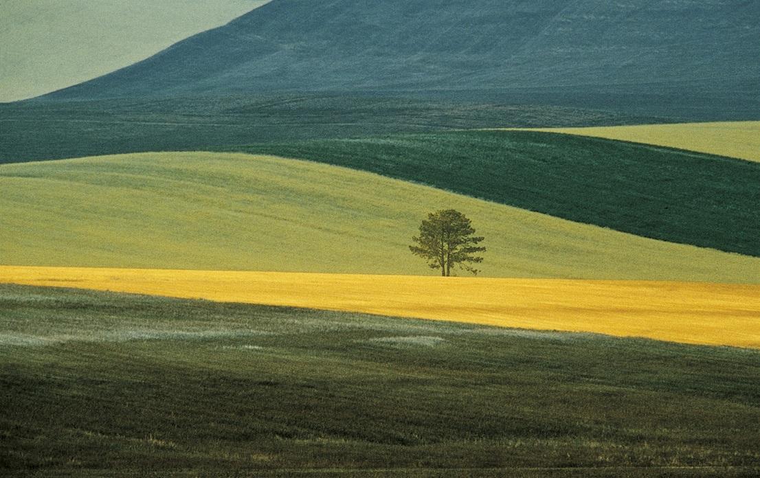 Franco Fontana, Basilicata, 1978.