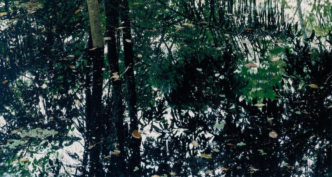 Axel Hütte Rio Negro‐4, Brasile dalla serie Water Reflections, 1998.