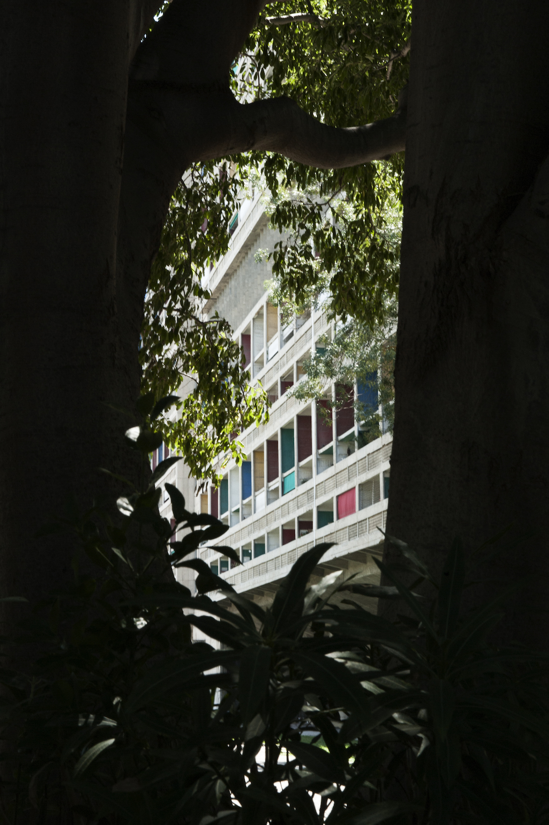 L'appartamento numero 50 dell'Unité d'Habitation di Marsiglia con allestimento di Pierre Charpin.
