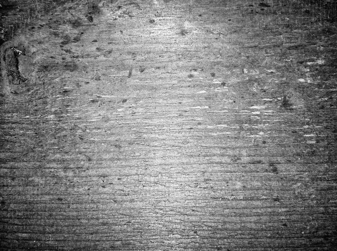 Legno, foto di Jacopo Benassi