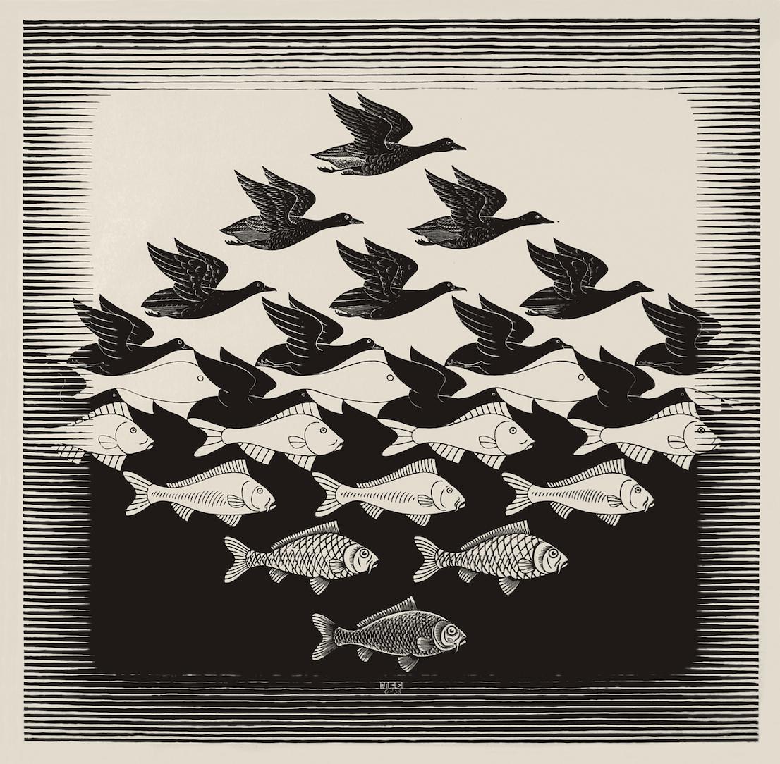 Maurits Cornelis Escher Cielo e acqua I 1938 Xilografia 435 x 439 mm Collezione Federico Giudiceandrea All M.C. Escher works © 2014 The M.C. Escher Company. All rights reserved www.mcescher.com