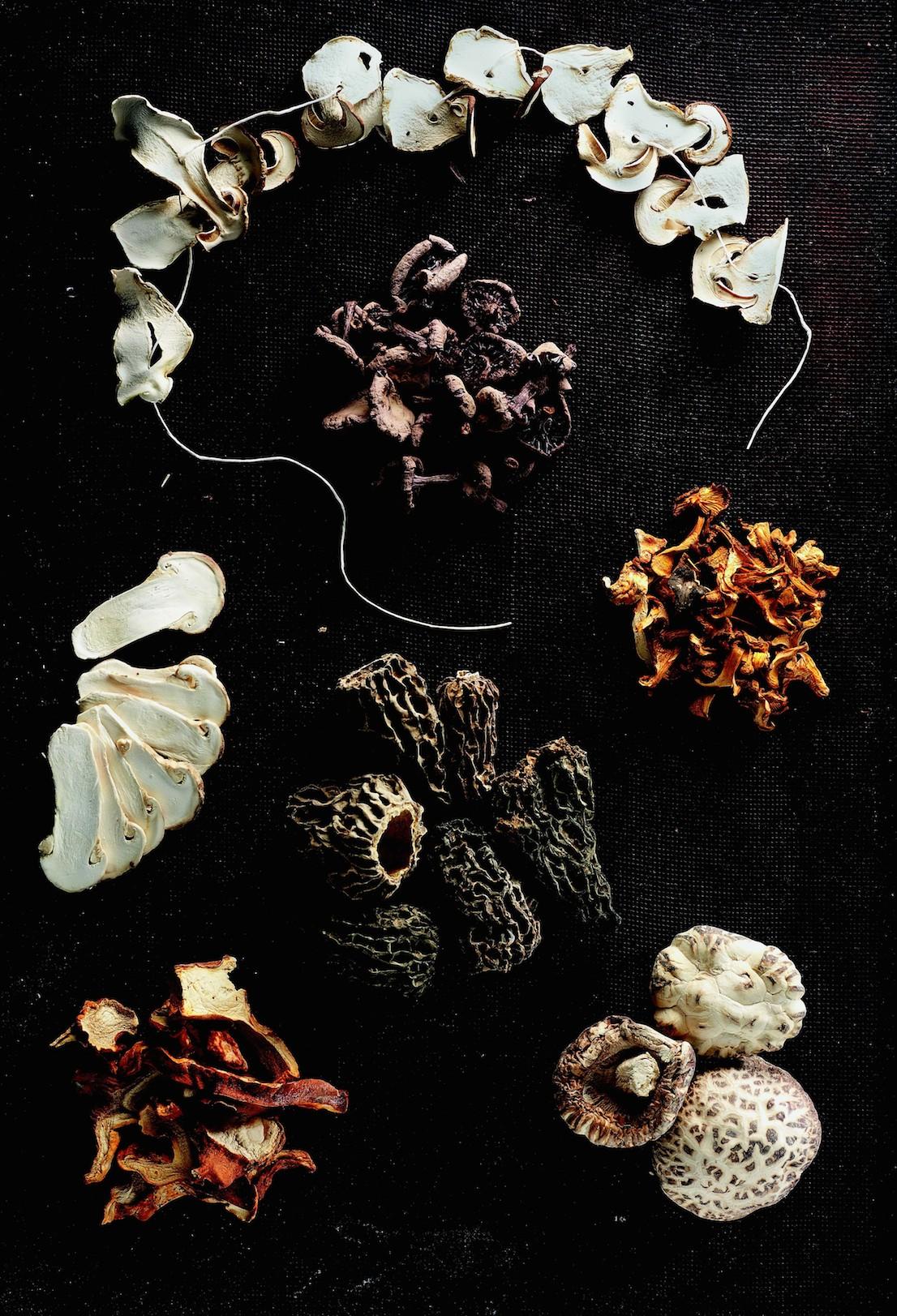 Funghi di Régis Marcon