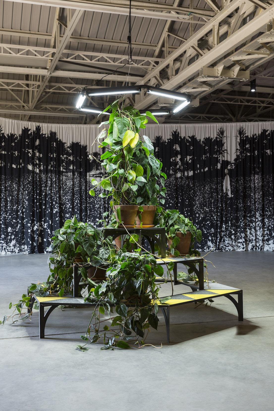 Celine Condorelli, A Bras Le Corps – with Philodendron (to Amalia Pica), 2014. Courtesy l'artista, Fondazione HangarBicocca, Milano. Foto Agostino Osio.