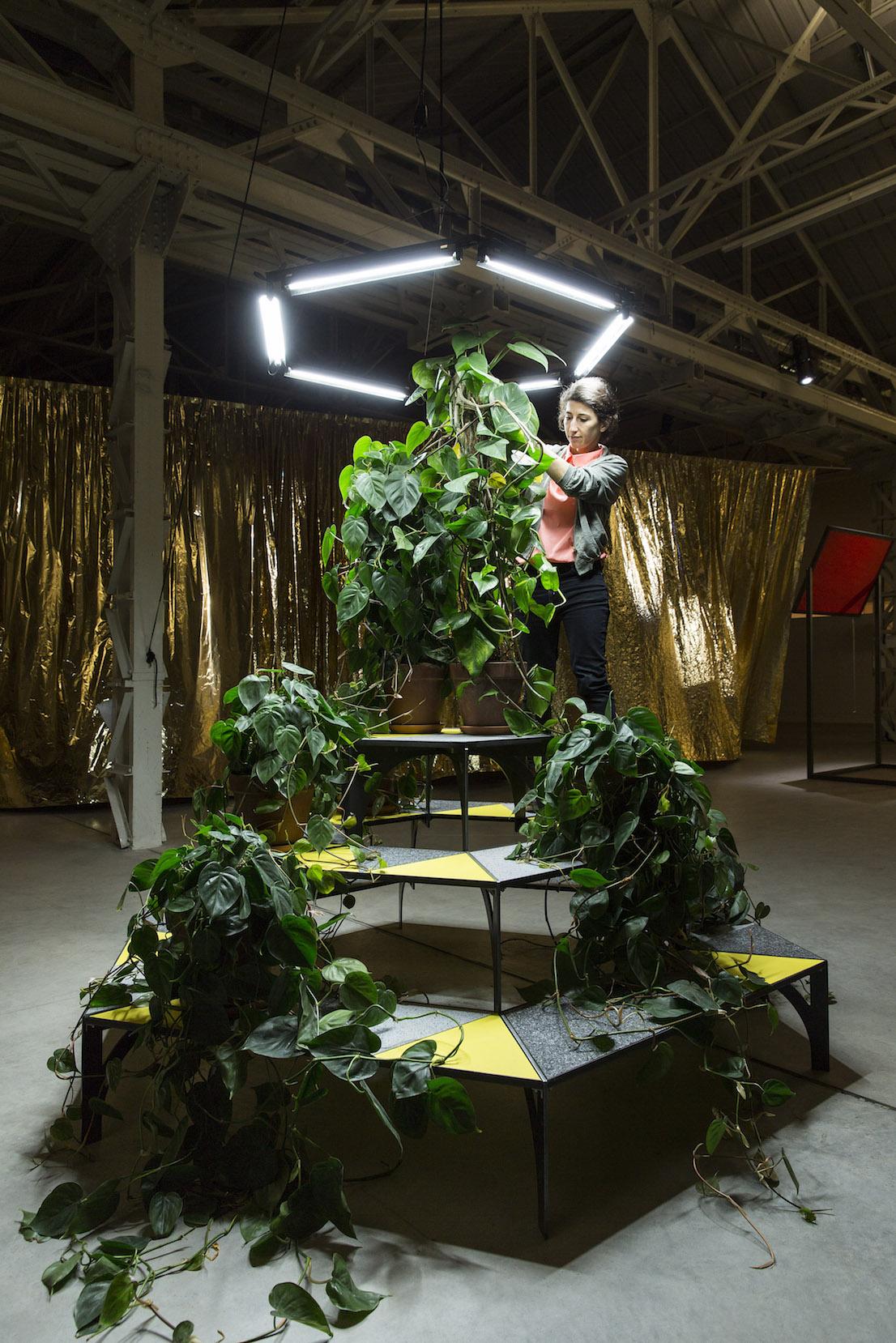 Celine Condorelli A Bras Le Corps – with Philodendron (to Amalia Pica), 2014. Courtesy: l'artista, Fondazione HangarBicocca, Milano. Foto Agostino Osio.
