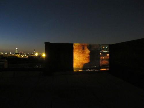 Valerio Rocco Orlando, Eva, 2010. ISCP, New York.