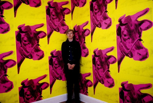 Andy Warhol (1928-1987) devant le Cow Wallpaper, 1965.