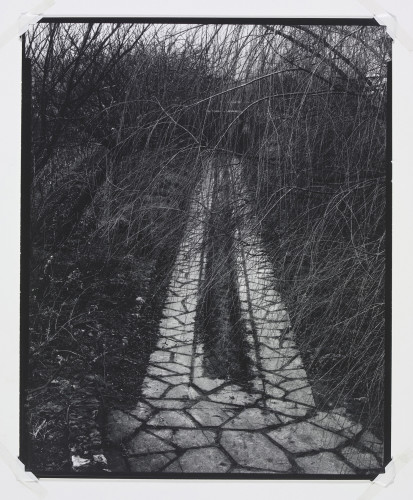 Paul Strand, Driveway, Orgeval, 1957. © Paul Strand Archive, Aperture Foundation.