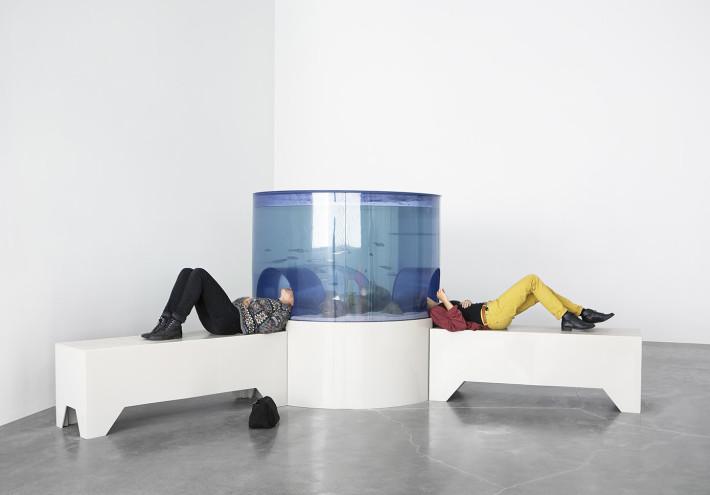 Carsten Höller, Aquarium, 1996. Foto: Benoit Pailley. Courtesy: Carsten Höller e Massimo de Carlo, Milano / London.
